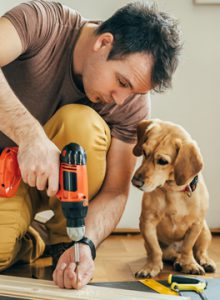 Builder drilling with a dog